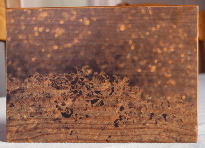 Original Photo Print | Melting Snow | Reclaimed Wood
