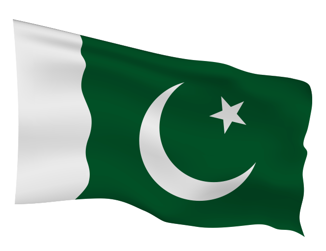 Pakistan Flag Scalable | Cheap Vector Art