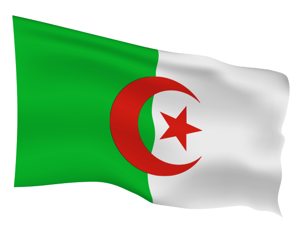 Algeria Flag Scalable | Cheap Vector Art