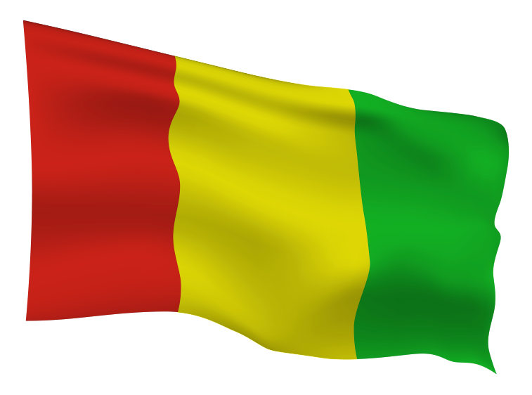 Guinea Flag Scalable | Cheap Vector Art