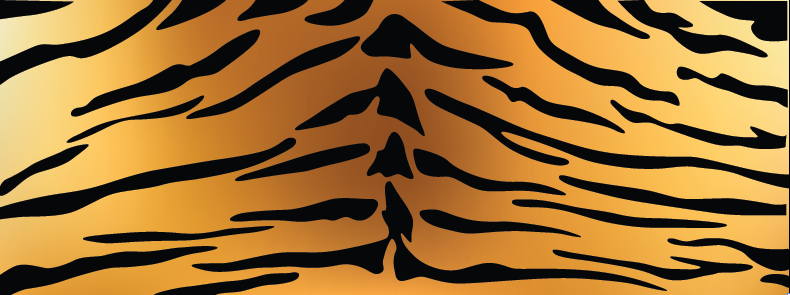 Tiger Fur Texture | Cheap Vector Art