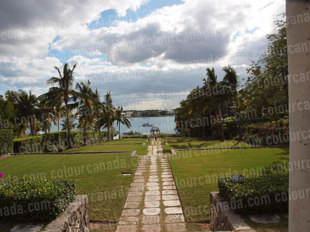Bahamas (1) Path to Ocean Paradise | Cheap Stock Photo