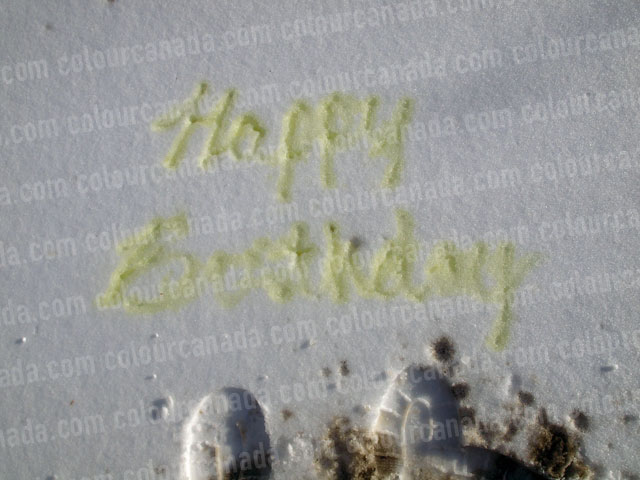 Happy Birthday Pee in the Snow | Cheap Stock Photo