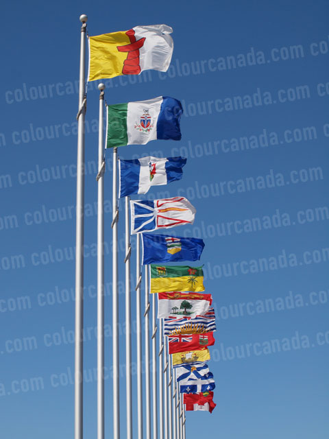 Canada's Flags (1) | Cheap Stock Photo