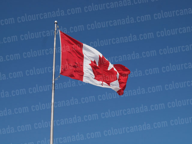 Canadian Flag | Cheap Stock Photo