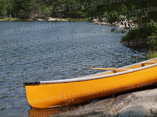 Canoe Yellow (1) | Cheap Stock Photo