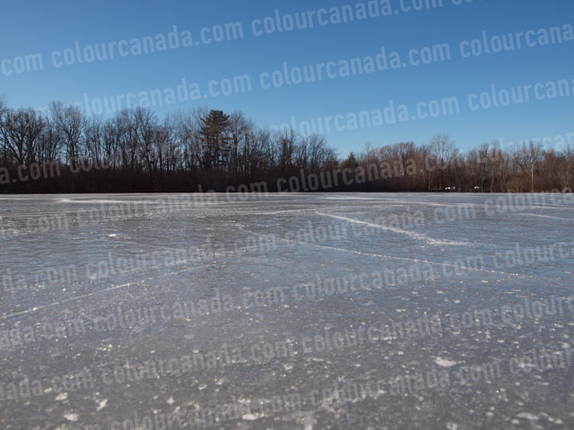 Ice on a Pond | Cheap Stock Photo