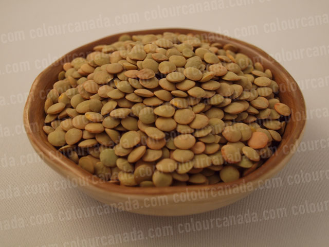 Lentils in a Bowl | Cheap Stock Photo