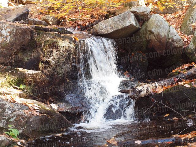 Waterfall in a Creek with Changing Leaves | Cheap Stock Photo