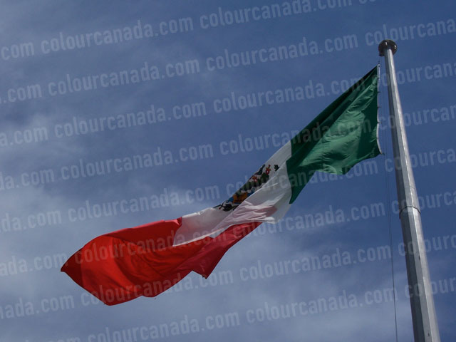 Mexican Flag | Cheap Stock Photo