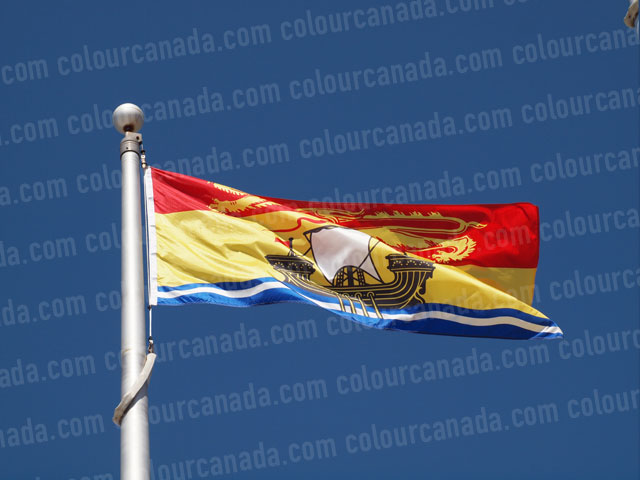 New Brunswick's Flag (1) | Cheap Stock Photo