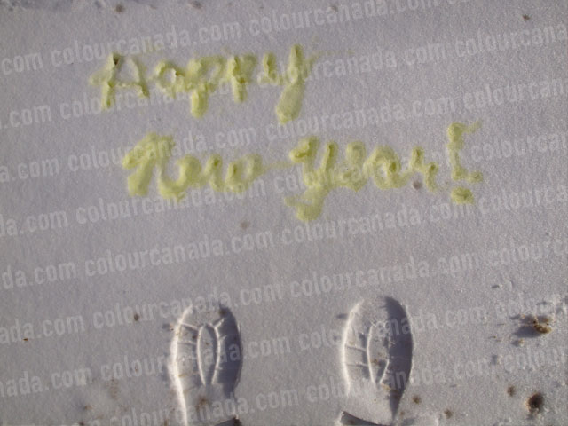 Happy New Year Pee in the Snow (1) | Cheap Stock Photo
