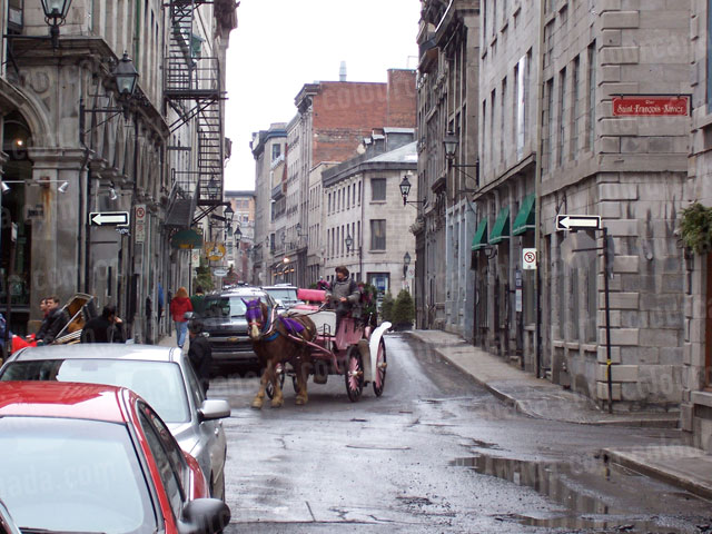 Old Montreal Horse and Carriage | Cheap Stock Photo