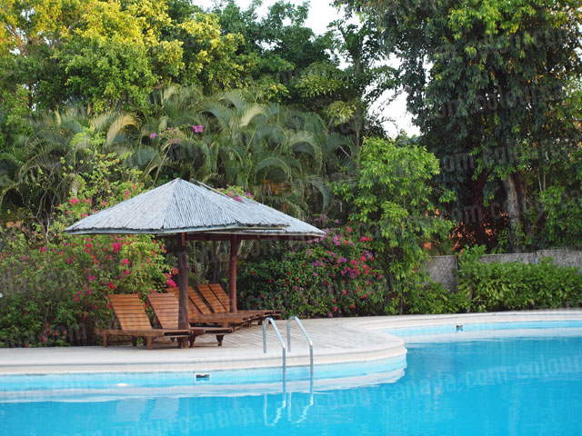 Palapas by the Pool | Cheap Stock Photo