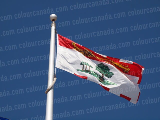 Prince Edward Island's Flag (1) | Cheap Stock Photo