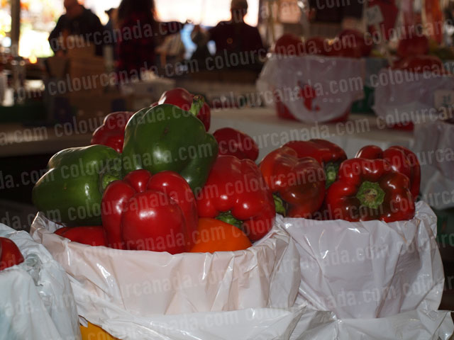 Peppers at a Market (1) | Cheap Stock Photo