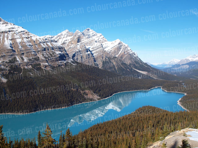 Peyto Lake, Alberta, Canada | Cheap Stock Photo
