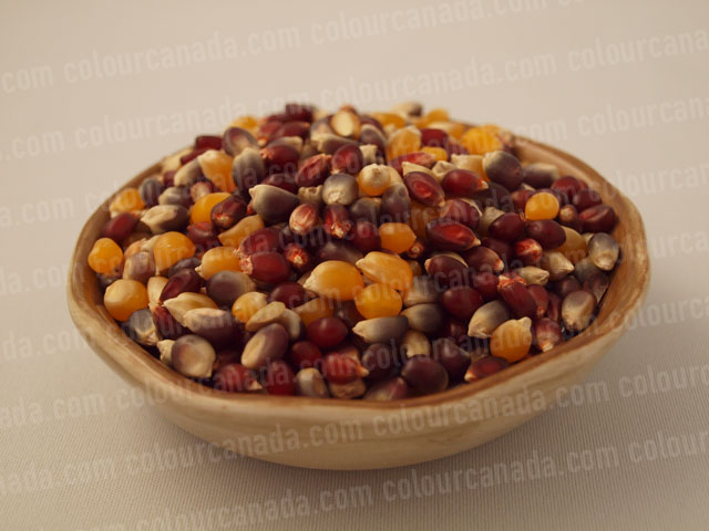 Pop Corn (1) Kernels in a Bowl | Cheap Stock Photo