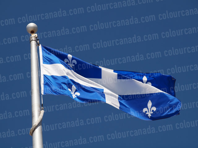 Quebec's Flag (1) | Cheap Stock Photo