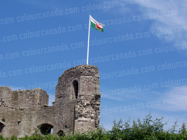 Raglan Castle Ruin with Welsh Flag | Cheap Stock Photo