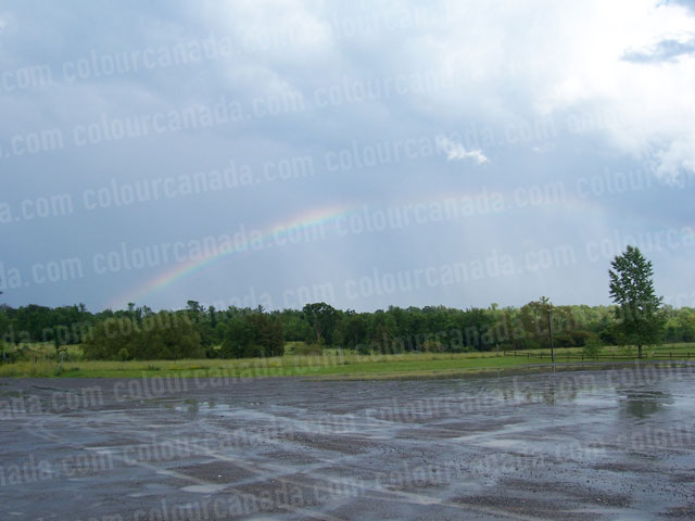Rainbow | Cheap Stock Photo