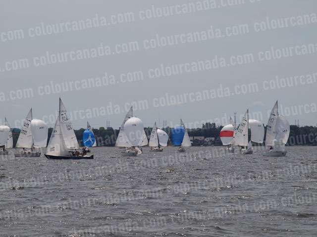 Sail Race (1) | Cheap Stock Photo