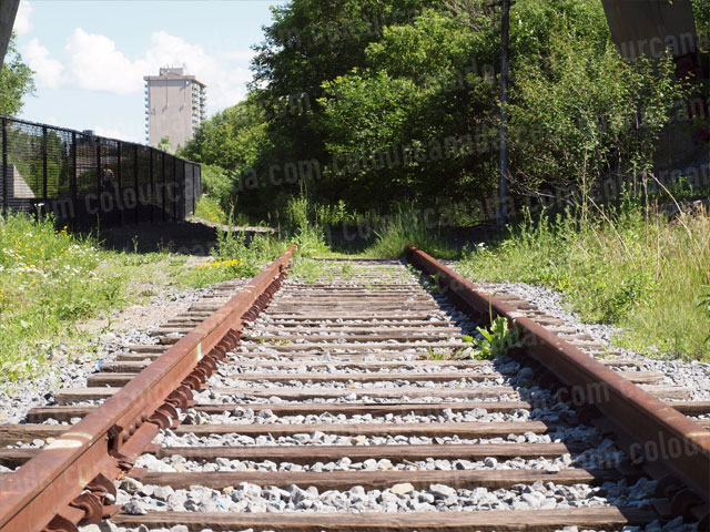 Train Tracks (1) | Cheap Stock Photo