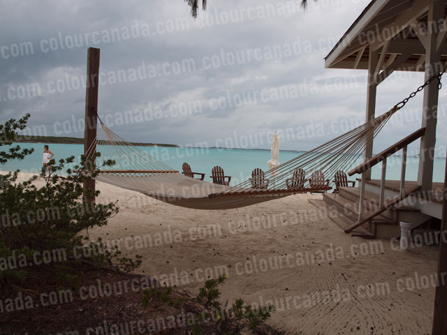 Tropical Hammock (1) Beach Paradise | Cheap Stock Photo