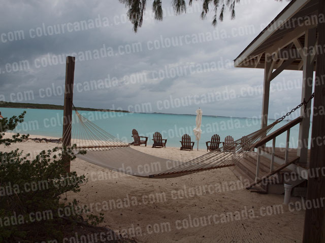 Tropical Hammock (2) Beach Paradise | Cheap Stock Photo