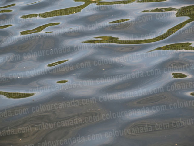 Light Ripples in the Water | Cheap Stock Photo