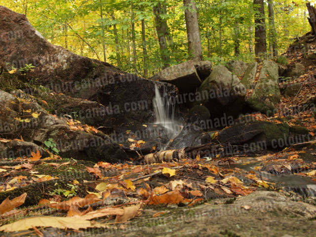 Waterfall Long Exposure in the Woods | Cheap Stock Photo