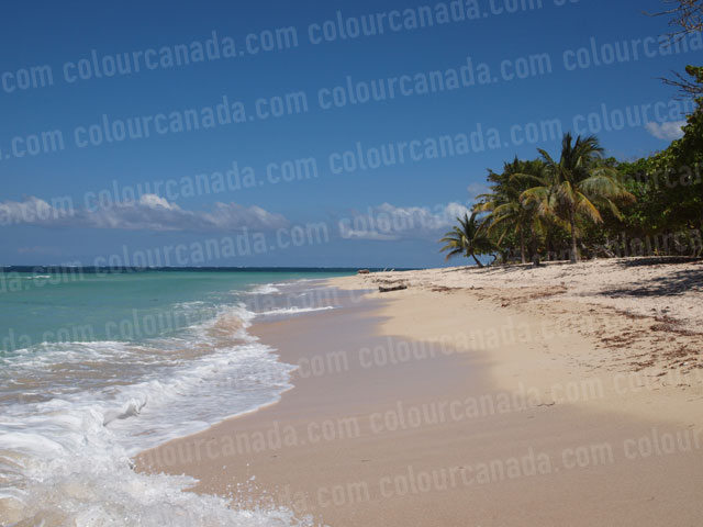 Waves on Tropical Beach (1) | Cheap Stock Photo