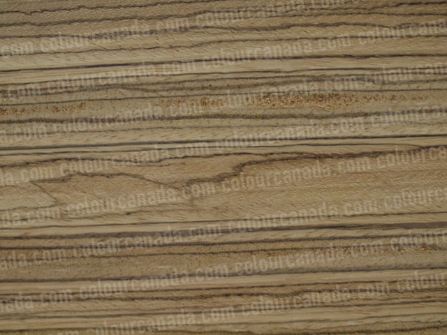 Wood Texture (4) | Cheap Stock Photo