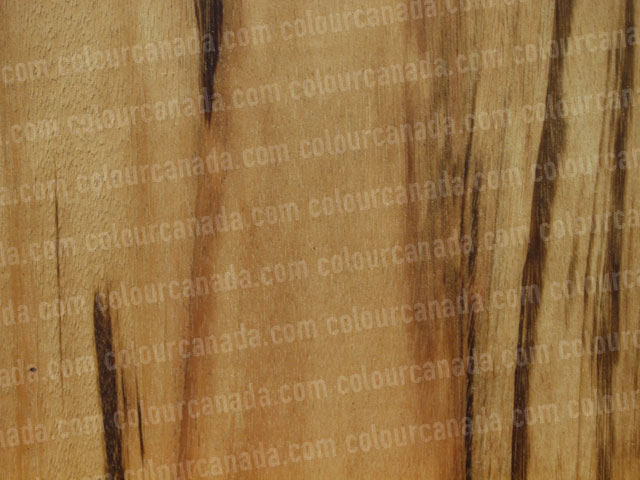 Wood Texture (5) | Cheap Stock Photo