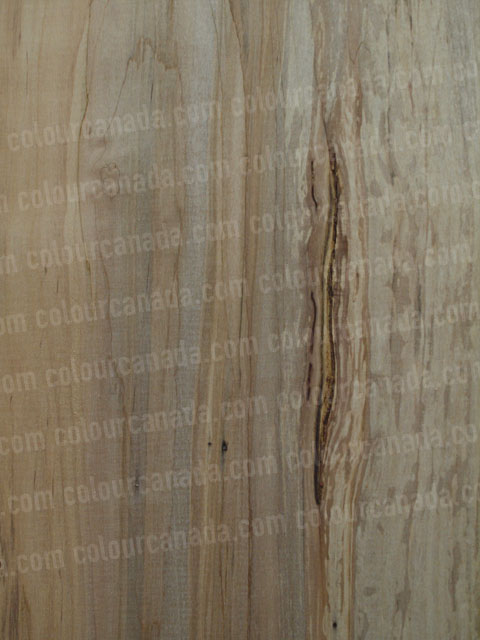 Wood Texture (8) | Cheap Stock Photo
